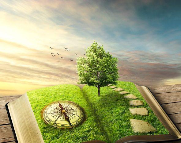 Tjocka böcker – högre krav på författarskapet
